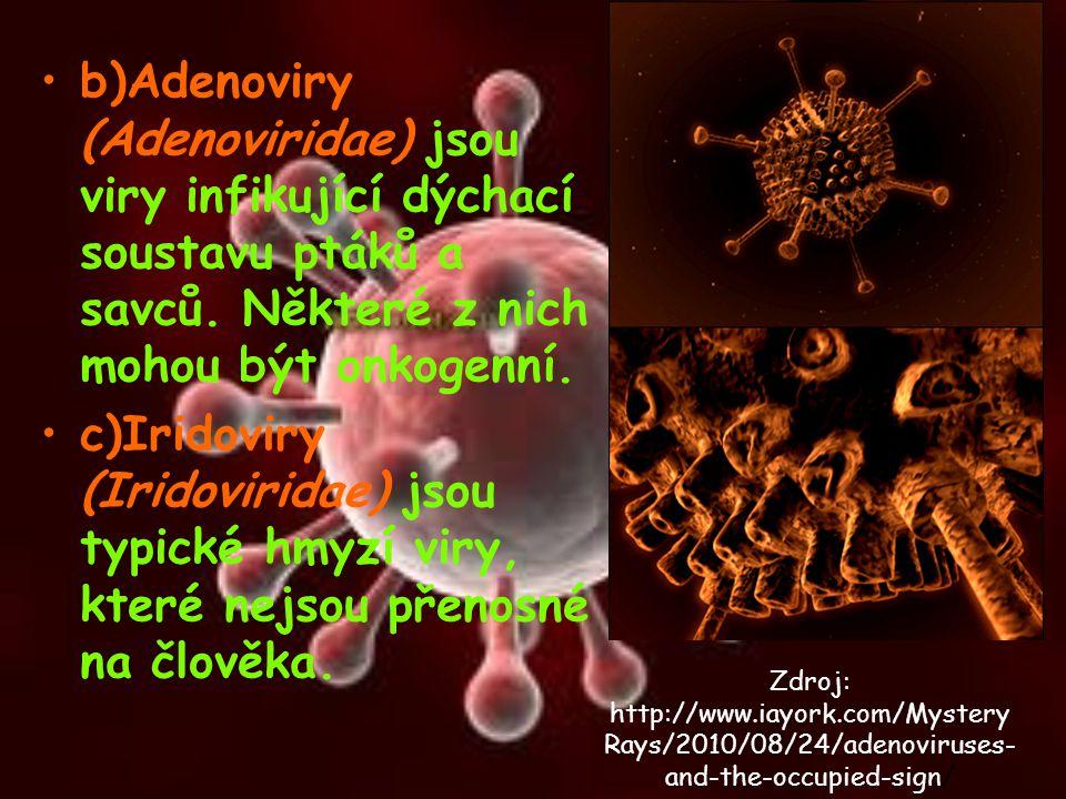 b)Adenoviry (Adenoviridae) jsou viry infikující dýchací soustavu ptáků a savců. Některé z nich mohou být onkogenní.