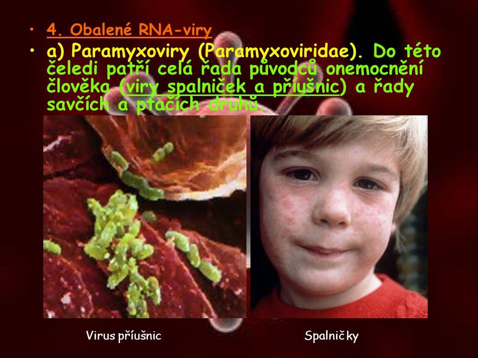 4. Obalené RNA-viry