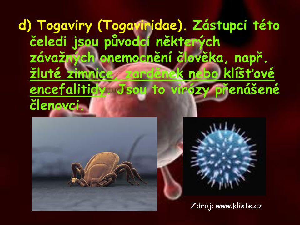 d) Togaviry (Togaviridae)