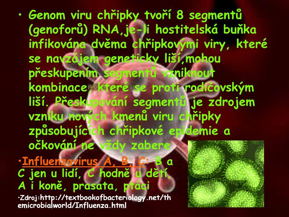 Genom viru chřipky tvoří 8 segmentů (genoforů) RNA,je-li hostitelská buňka infikována dvěma chřipkovými viry, které se navzájem geneticky liší,mohou přeskupením segmentů vzniknout kombinace, které se proti rodičovským liší. Přeskupování segmentů je zdrojem vzniku nových kmenů viru chřipky způsobujících chřipkové epidemie a očkování ne vždy zabere