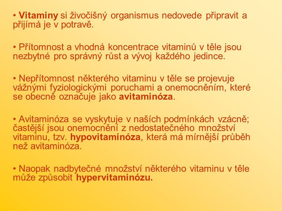 Vitaminy si živočišný organismus nedovede připravit a přijímá je v potravě.