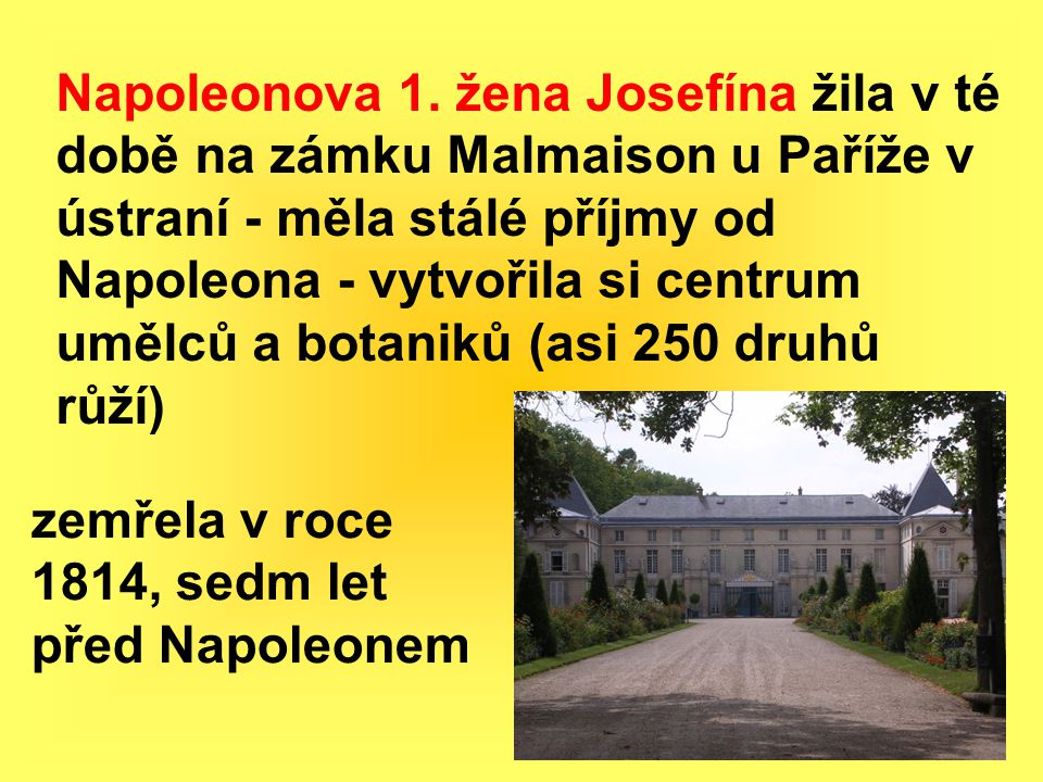 Napoleonova 1. žena Josefína žila v té době na zámku Malmaison u Paříže v ústraní - měla stálé příjmy od Napoleona - vytvořila si centrum umělců a botaniků (asi 250 druhů růží)