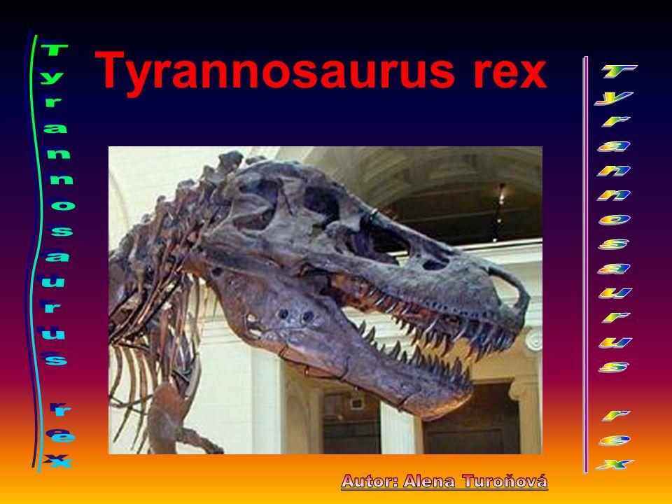 Tyrannosaurus rex Tyrannosaurus rex Tyrannosaurus rex