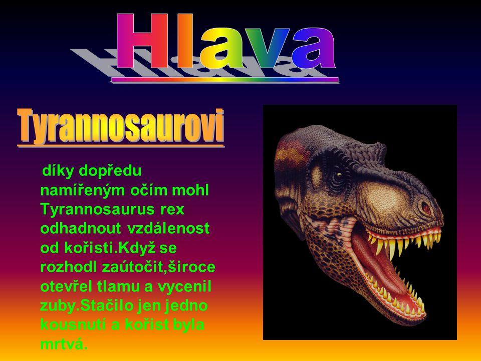 . Hlava. Tyrannosaurovi.