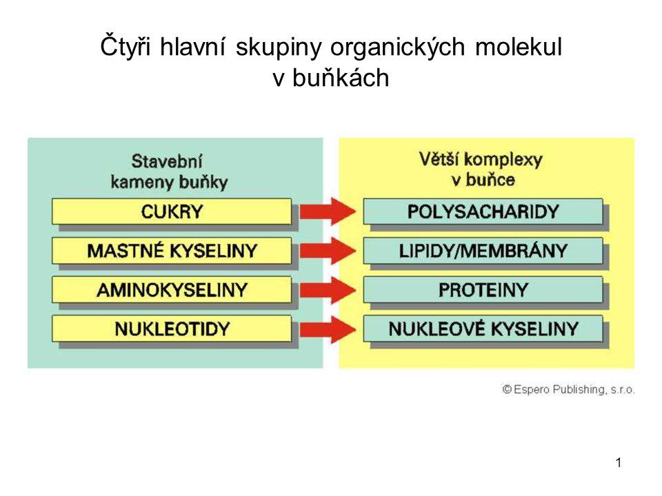 Čtyři hlavní skupiny organických molekul v buňkách