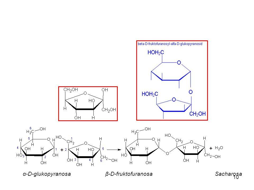 α-D-glukopyranosa β-D-fruktofuranosa Sacharosa