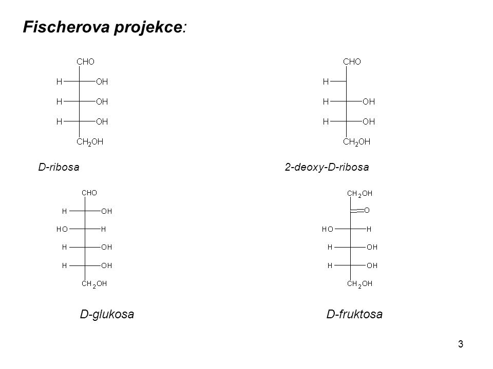 Fischerova projekce: D-ribosa 2-deoxy-D-ribosa D-glukosa D-fruktosa