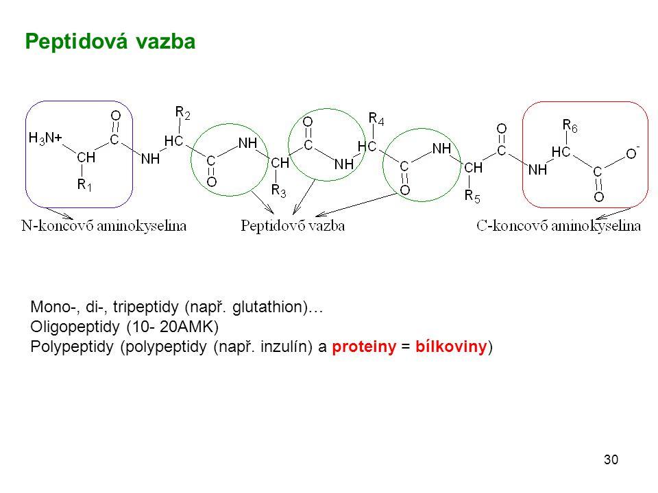 Peptidová vazba Mono-, di-, tripeptidy (např. glutathion)…