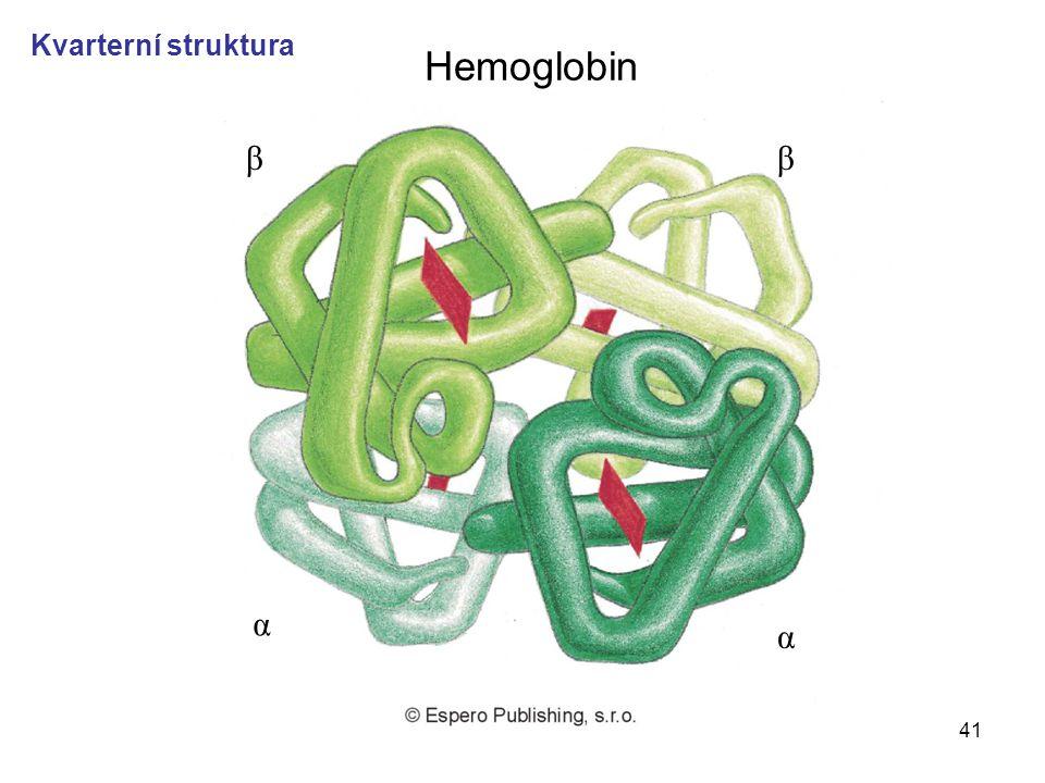 Hemoglobin Kvarterní struktura β β α α