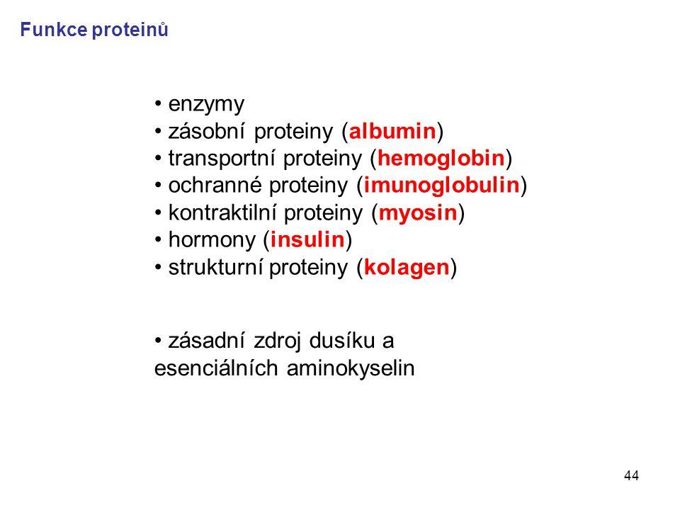 zásobní proteiny (albumin) transportní proteiny (hemoglobin)