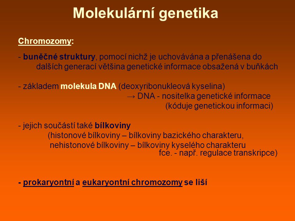 Molekulární genetika Chromozomy: