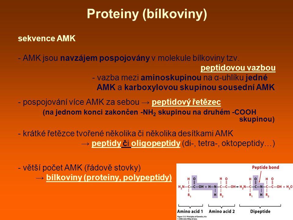 Proteiny (bílkoviny) sekvence AMK