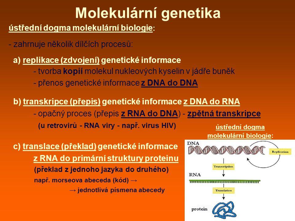 molekulární biologie: