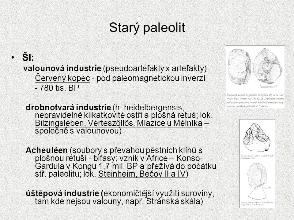 Starý paleolit ŠI: Červený kopec - pod paleomagnetickou inverzí