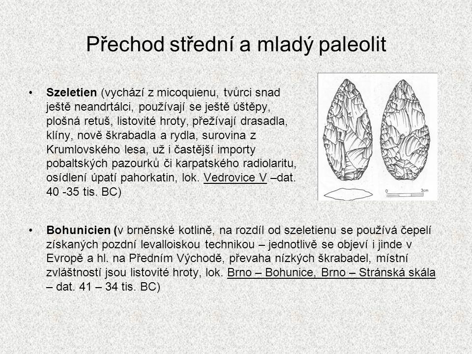 Přechod střední a mladý paleolit