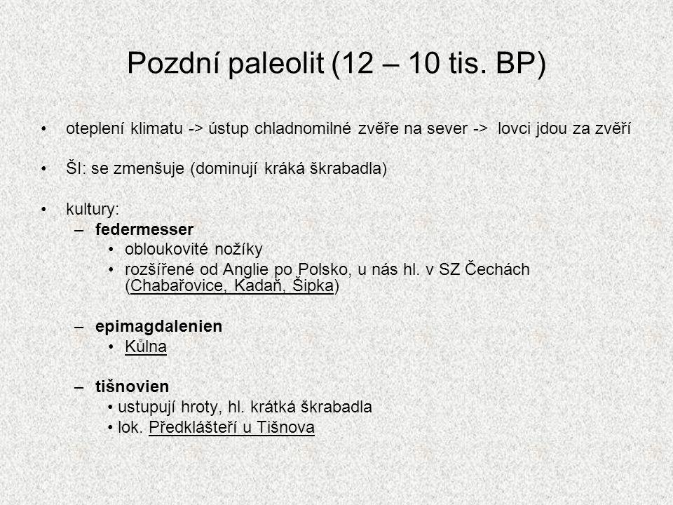 Pozdní paleolit (12 – 10 tis. BP)