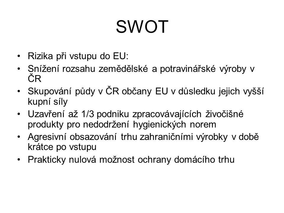 SWOT Rizika při vstupu do EU: