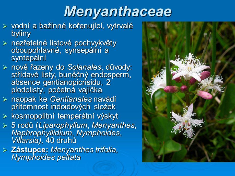 Menyanthaceae vodní a bažinné kořenující, vytrvalé byliny