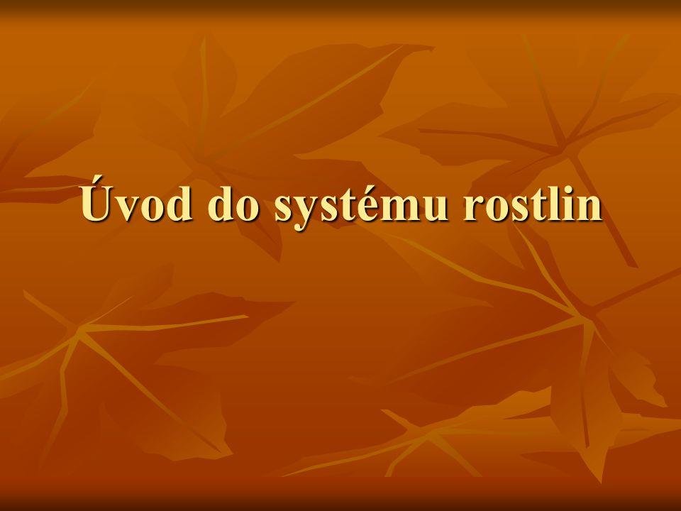 Úvod do systému rostlin