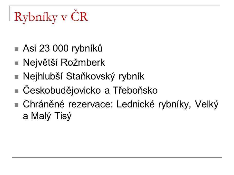 Rybníky v ČR Asi 23 000 rybníků Největší Rožmberk