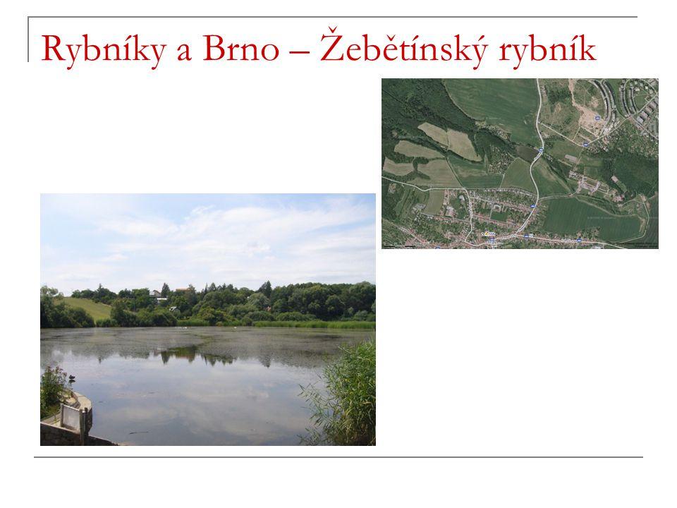Rybníky a Brno – Žebětínský rybník
