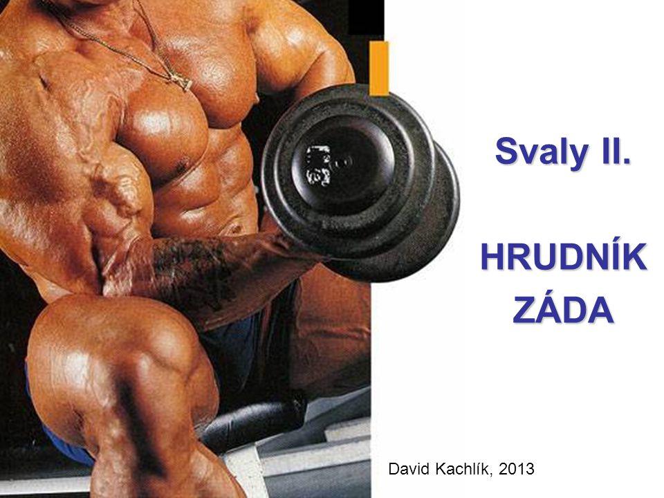 Svaly II. Svaly II. HRUDNÍK ZÁDA David Kachlík, 2013