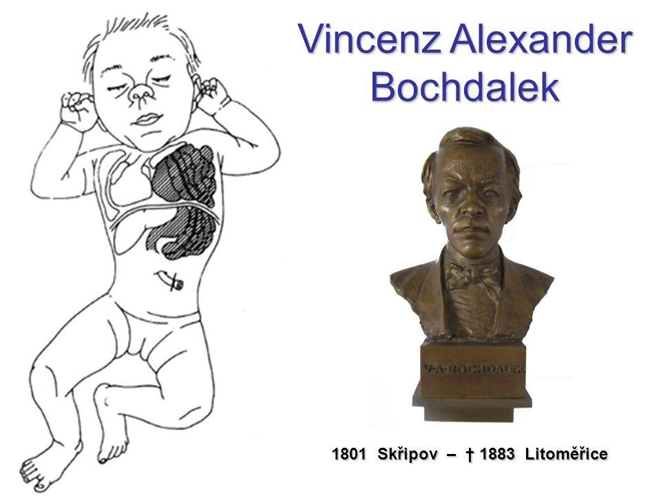 Vincenz Alexander Bochdalek 1801 Skřipov – † 1883 Litoměřice