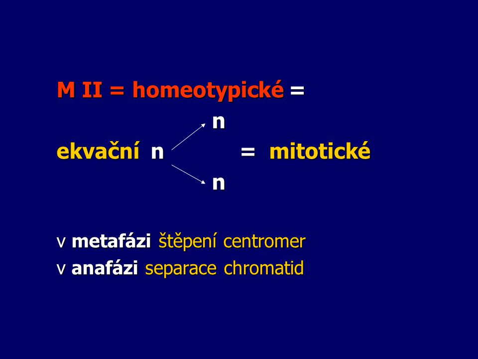 M II = homeotypické = n ekvační n = mitotické