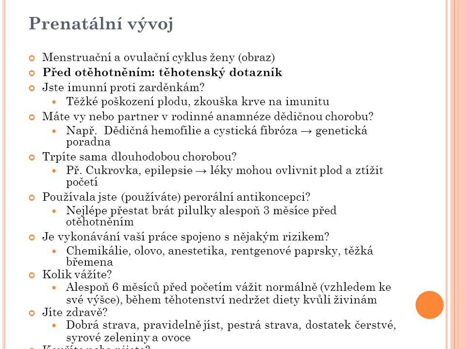 Prenatální vývoj Menstruační a ovulační cyklus ženy (obraz)