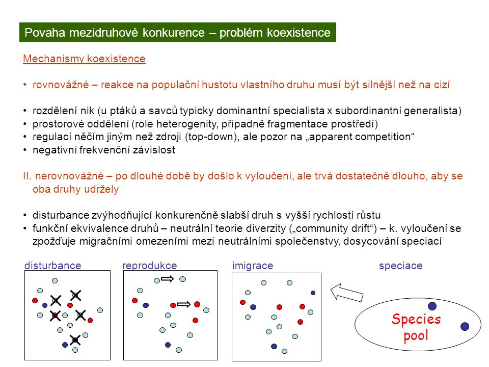Species pool Povaha mezidruhové konkurence – problém koexistence