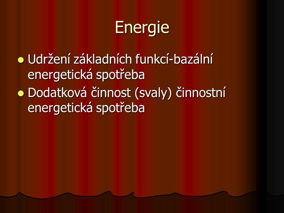 Energie Udržení základních funkcí-bazální energetická spotřeba