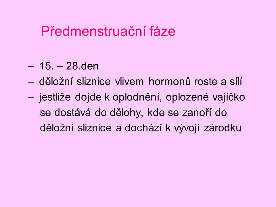 Předmenstruační fáze 15. – 28.den
