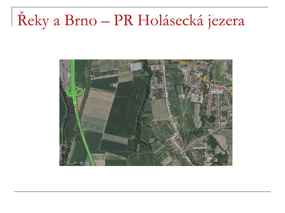 Řeky a Brno – PR Holásecká jezera