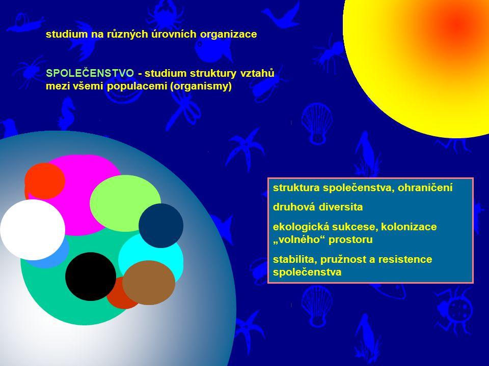 studium na různých úrovních organizace