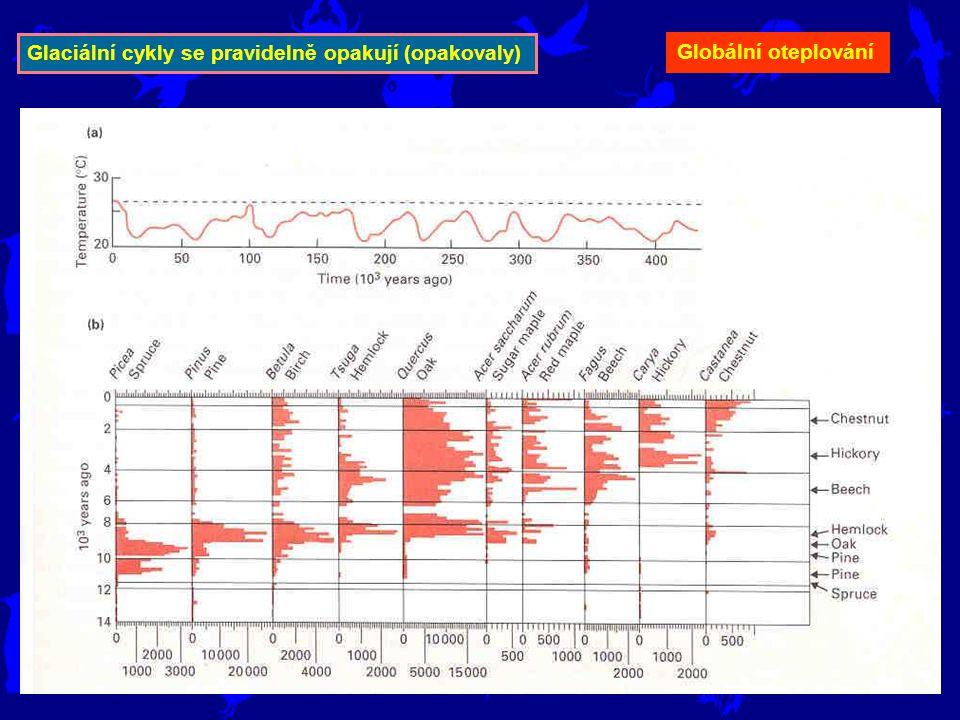 Glaciální cykly se pravidelně opakují (opakovaly)