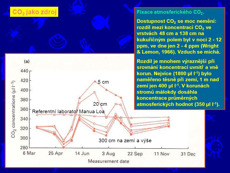 CO2 jako zdroj Fixace atmosferického CO2.