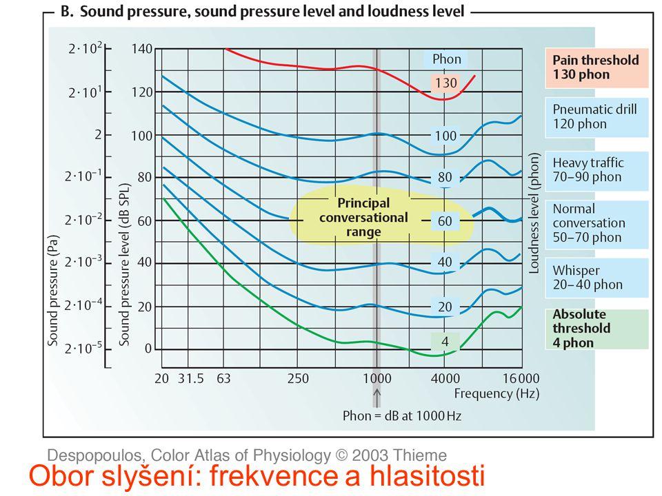 Obor slyšení: frekvence a hlasitosti