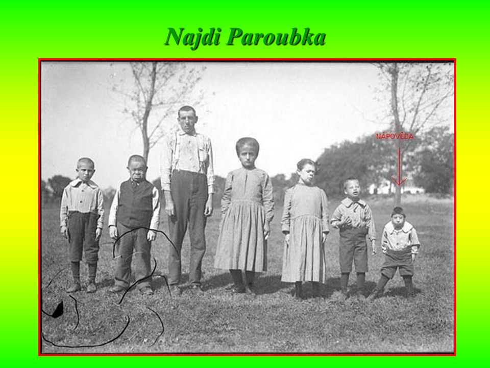 Najdi Paroubka