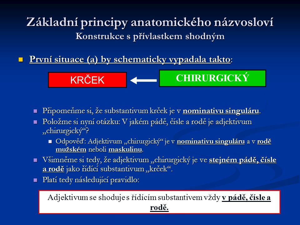 Základní principy anatomického názvosloví Konstrukce s přívlastkem shodným