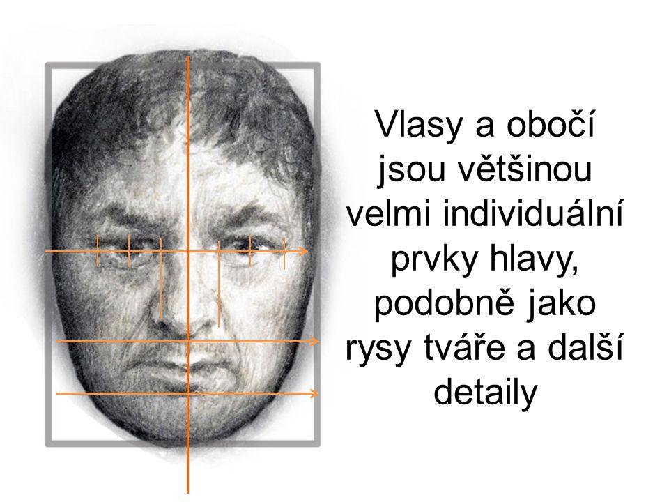 Vlasy a obočí jsou většinou velmi individuální prvky hlavy, podobně jako rysy tváře a další detaily