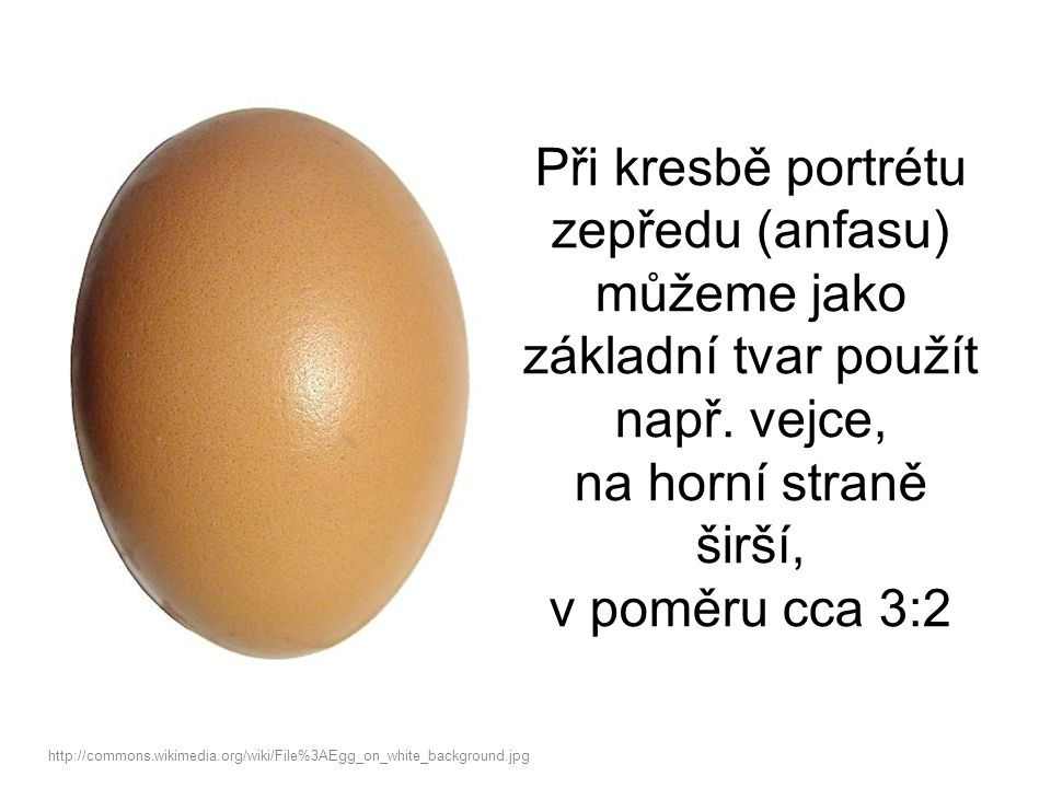 Při kresbě portrétu zepředu (anfasu) můžeme jako základní tvar použít např. vejce, na horní straně širší, v poměru cca 3:2