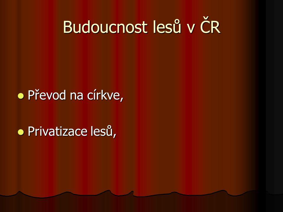 Budoucnost lesů v ČR Převod na církve, Privatizace lesů,
