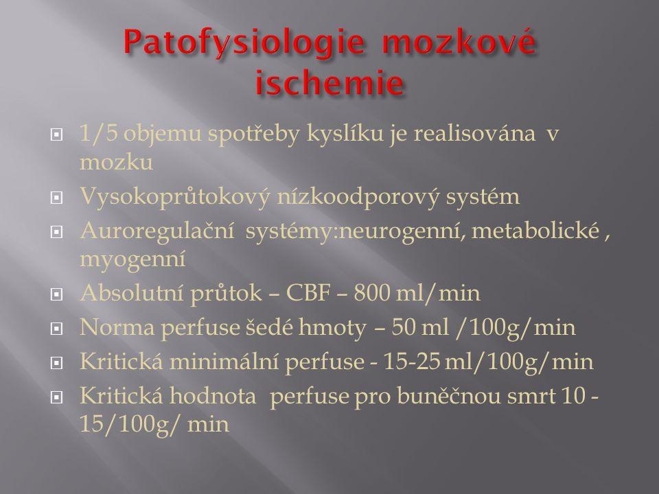 Patofysiologie mozkové ischemie