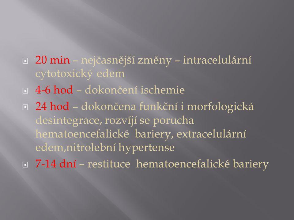 20 min – nejčasnější změny – intracelulární cytotoxický edem