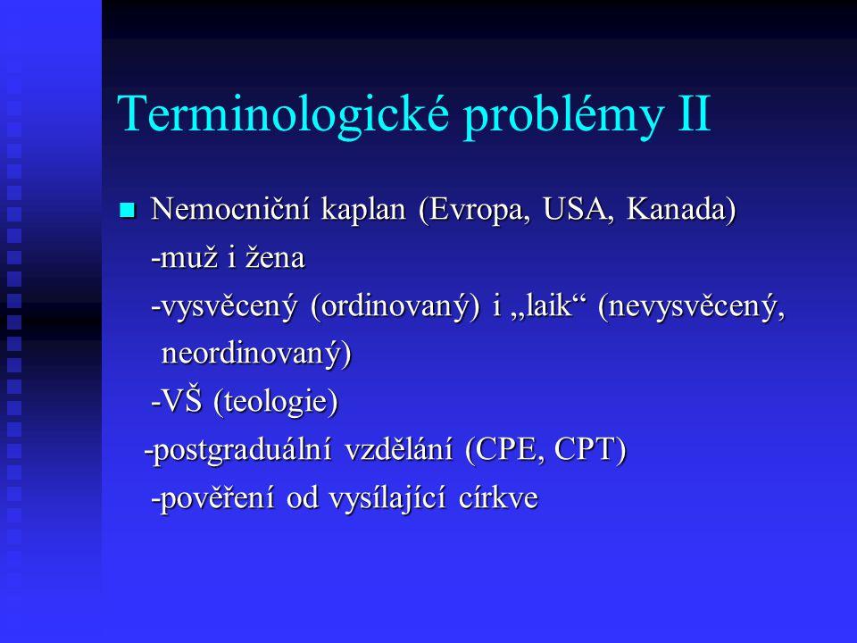 Terminologické problémy II