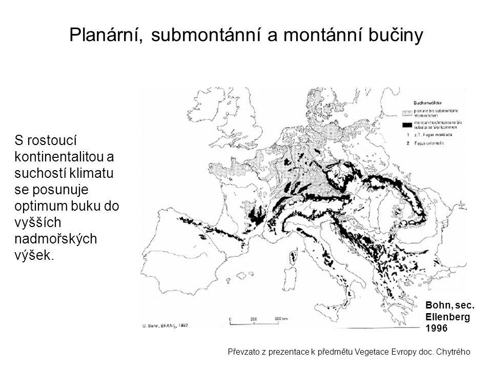 Planární, submontánní a montánní bučiny