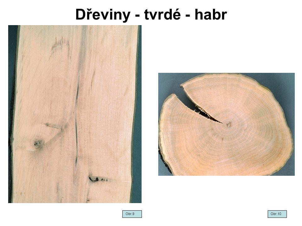 Dřeviny - tvrdé - habr Obr.9 Obr.10