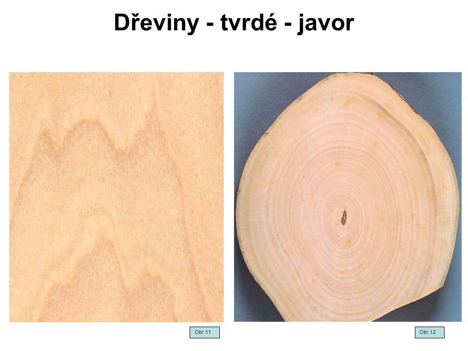 Dřeviny - tvrdé - javor Obr.11 Obr.12