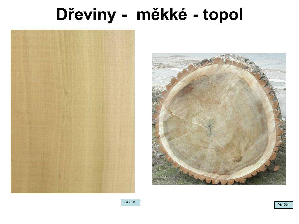 Dřeviny - měkké - topol Obr.19 Obr.20