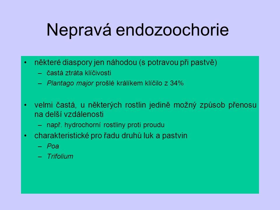 Nepravá endozoochorie